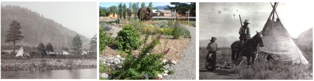 (L, R) images c/o Susan Timentwa; (middle) Methow Valley Native Plant Garden